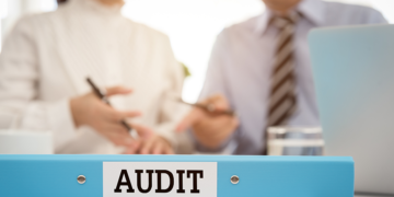 Tax audit representation services